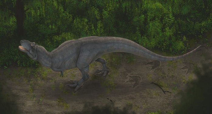 Study sheds new light on how huge carnivorous dinosaurs moved